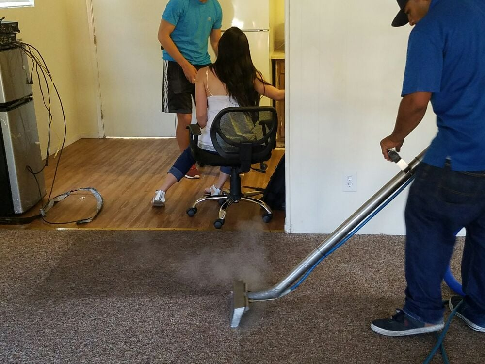 Castillo S Carpet Cleaning 156 Photos Amp 61 Reviews Carpet Cleaning