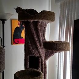Photo Of Cu0026C Cat Furniture   Burbank, CA, United States. Fun Was Had