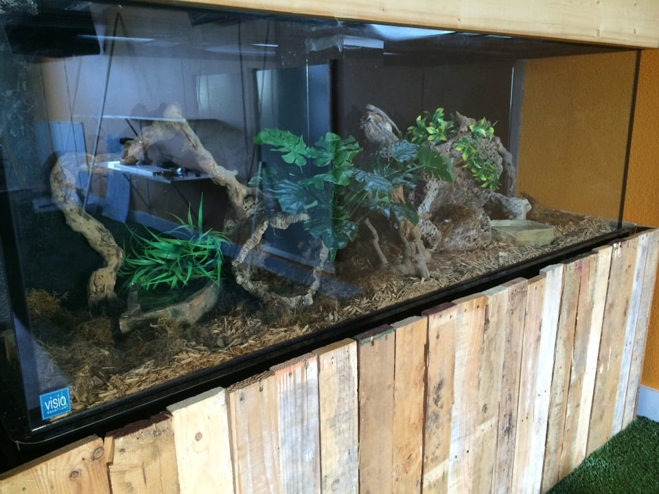 Fish tank terrarium stand cover made from pallet wood for Fish tank terrarium