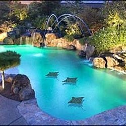 Unique Pools & Designs - 20 Photos - Pool Cleaners - 2100 ...