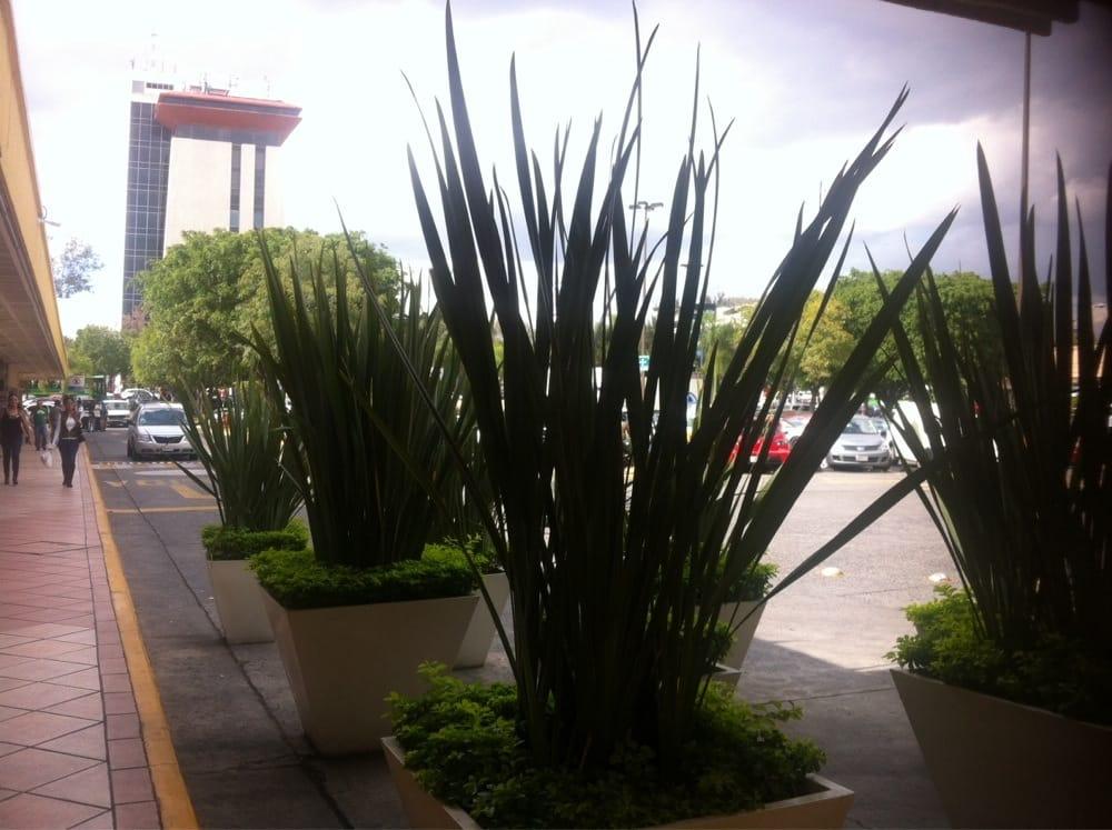 Fotos de plaza del sol yelp for Eventos plaza del sol