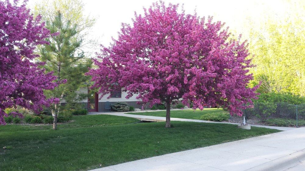Crystal Springs Rv Park: 15649 SW 35th Ave, Ellendale, MN