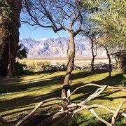 Saline Valley Warm Springs - 57 Photos & 33 Reviews - Parks