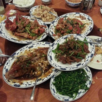 Lucky Garden Chinese Food Lunch Special Garden Ftempo