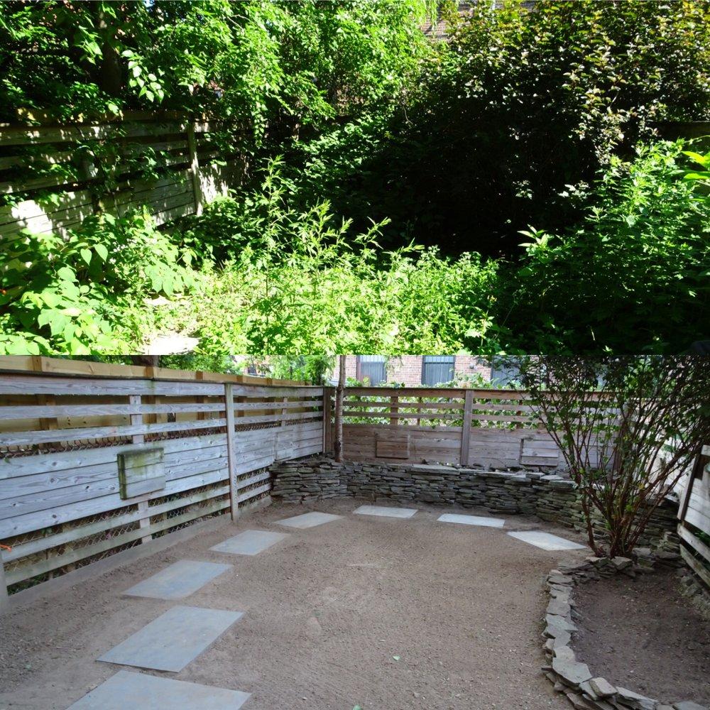 Bed-Stuy Garden Guy: Brooklyn, NY