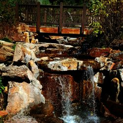 Photo Of Betty Ford Alpine Garden   Vail, CO, United States