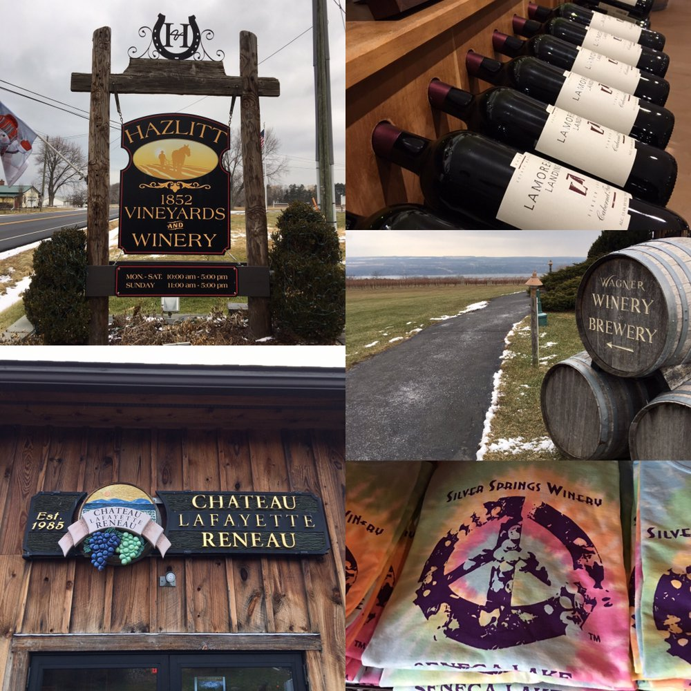 PALS Car Service and Wine Tours: Penn Yan, NY