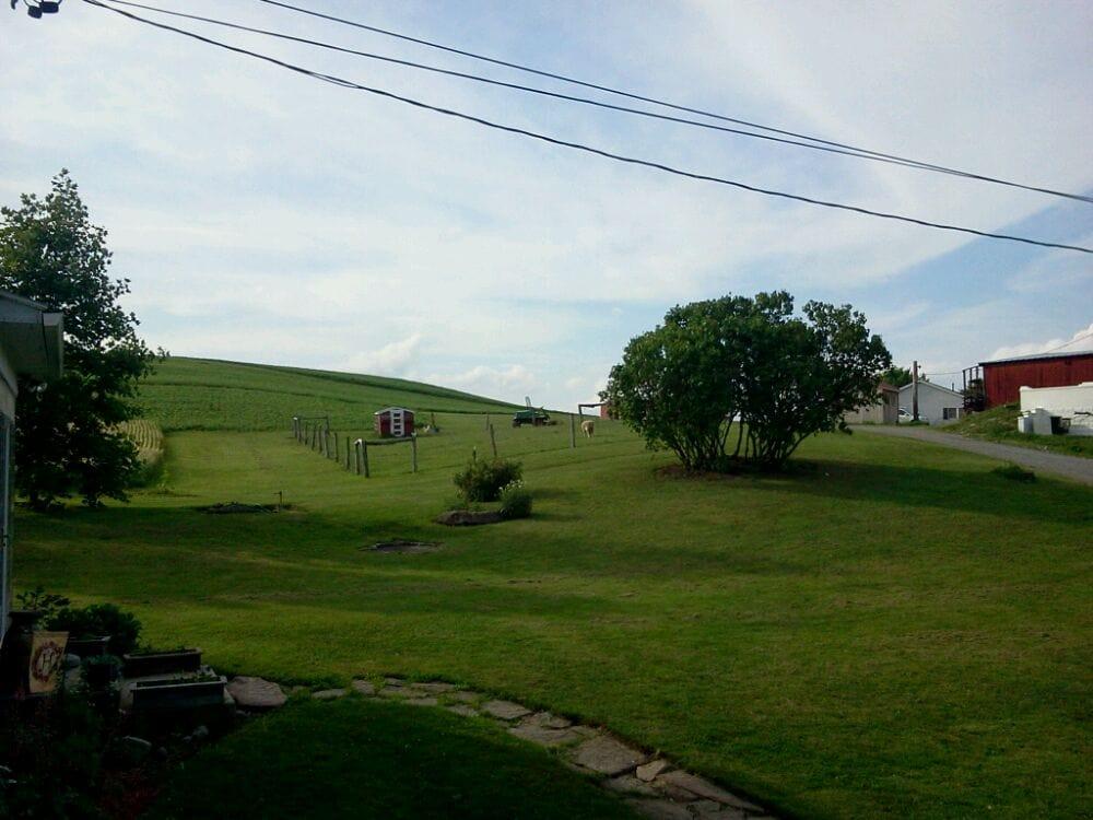 Schantz Haus Farm Vacation Bed & Breakfast: 687 E Campus Ave, Davidsville, PA