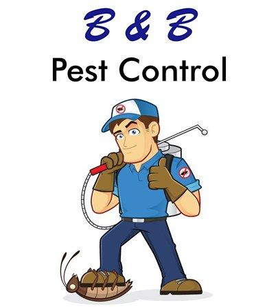 B & B Pest Control: 271 Western Ave, Lynn, MA