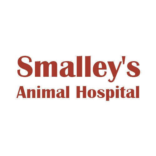 Smalley's Animal Hospital: 600 E Jackson St, Dublin, GA