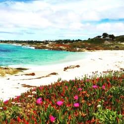 Photo Of Pebble Beach Ca United States I Love