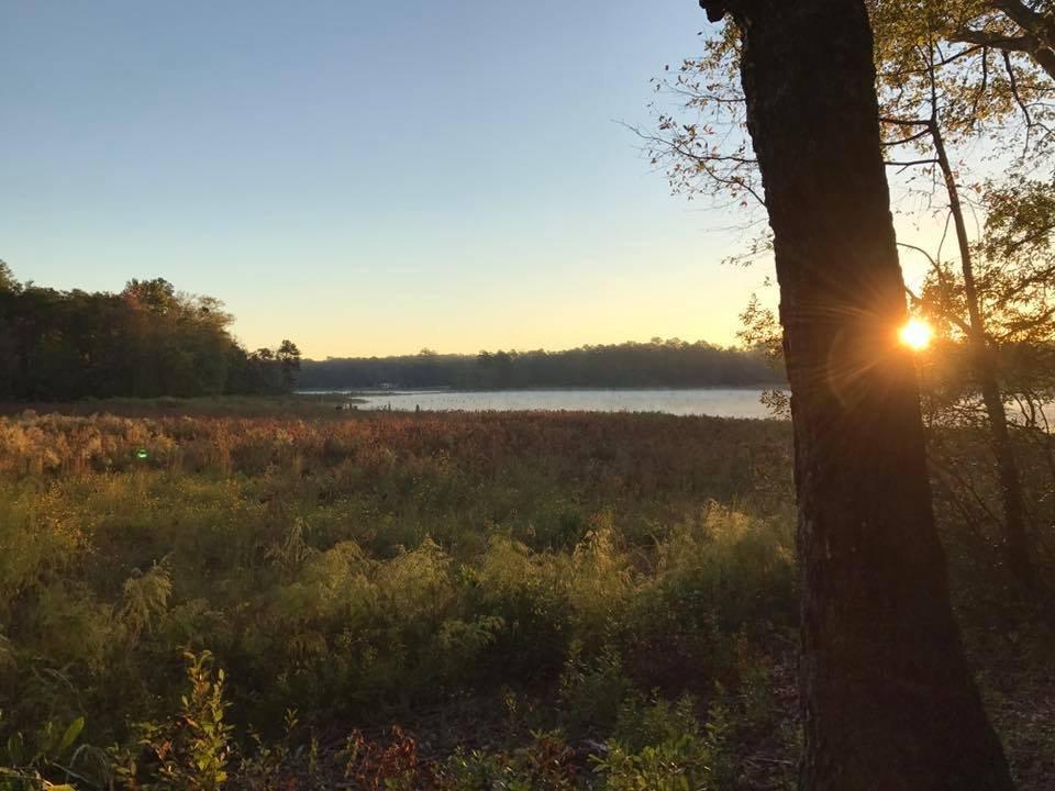Langley Pond Park: 113 Langley Dam Rd, Burnettown, SC