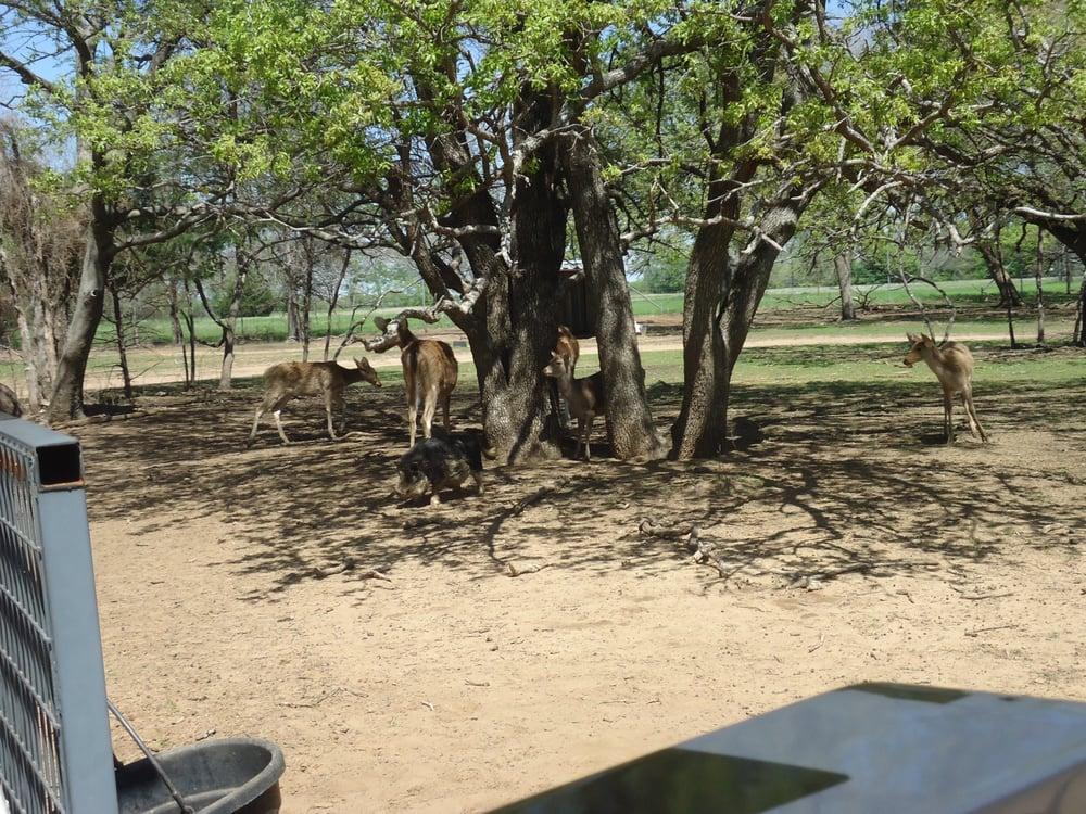 Sharkarosa Wildlife Ranch