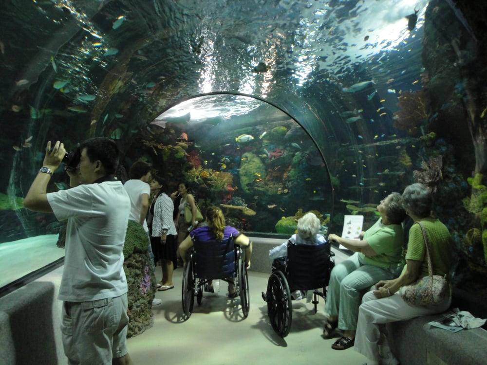 Photos for The Virginia Aquarium & Marine Science Center ...