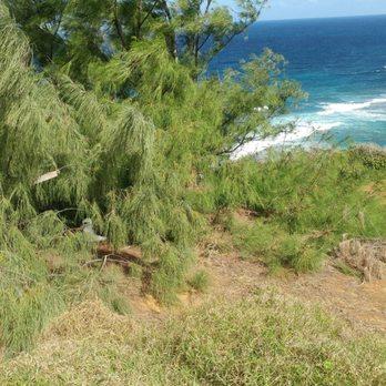 Photo Of Gardens Na Aina Kai   Kilauea, HI, United States