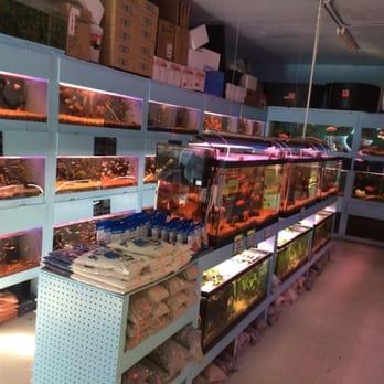 Hung ming aquarium 14 photos 64 reviews local fish for Local fish store