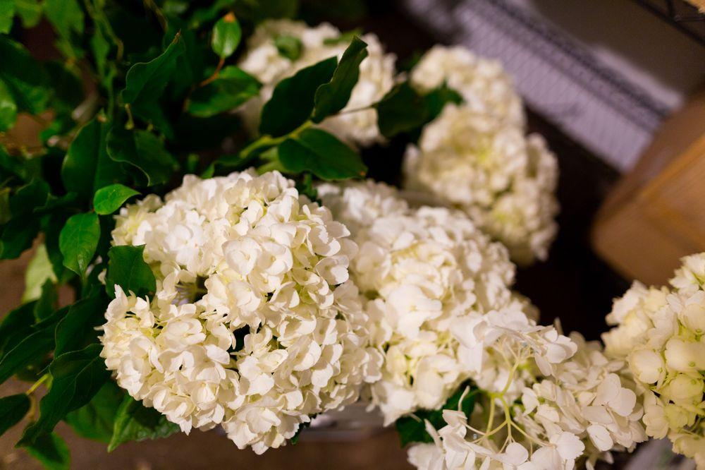 The Blossom Shoppe Florist and Gifts: 402 E Ocean Ave, Boynton Beach, FL