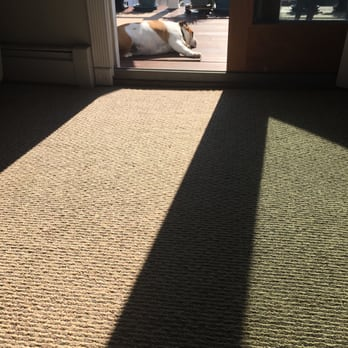 Photo Of Tri County Carpet Cleaning Levittown Ny United States Bulldog Clean