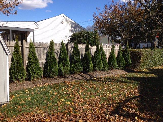 Iaboni John Landscaping: 171 Merrick Rd, Amityville, NY