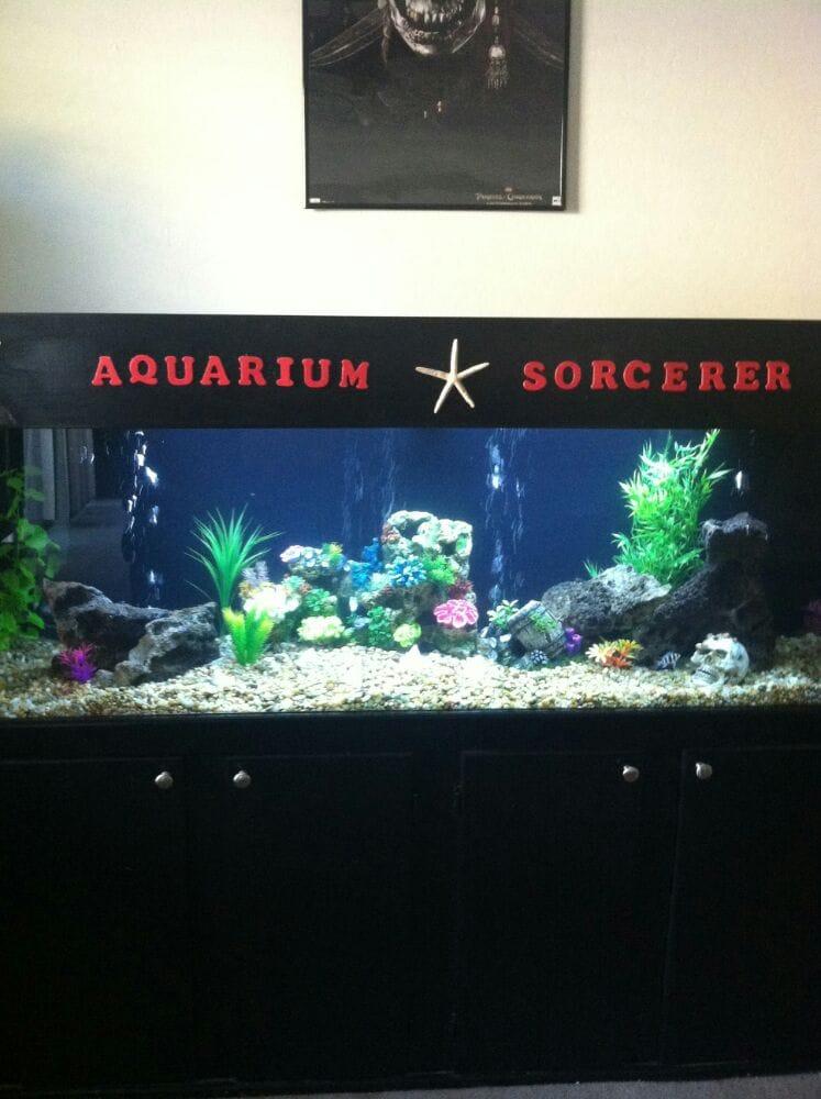 Aquarium Sorcerer Closed Pet Services 1255 S Rialto
