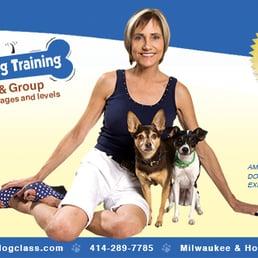 Service Dog Training Milwaukee Wi