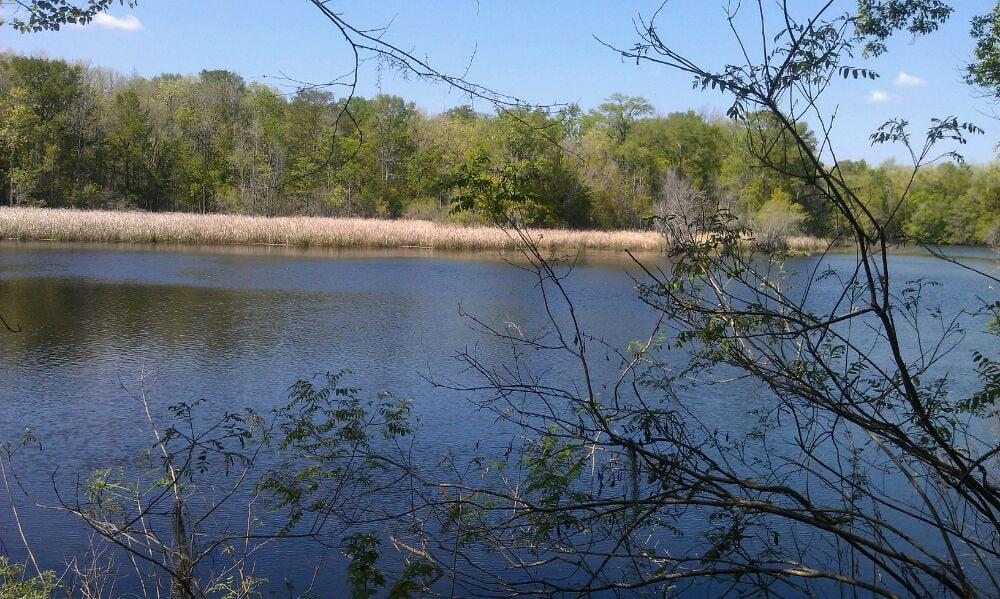 Savannah Ogeechee Canal Museum Nature Center