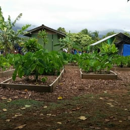 Photo Of Maui Nui Botanical Gardens   Kahului, HI, United States