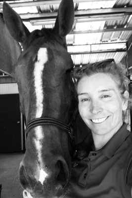 Healthy Horse Massage and Grooming