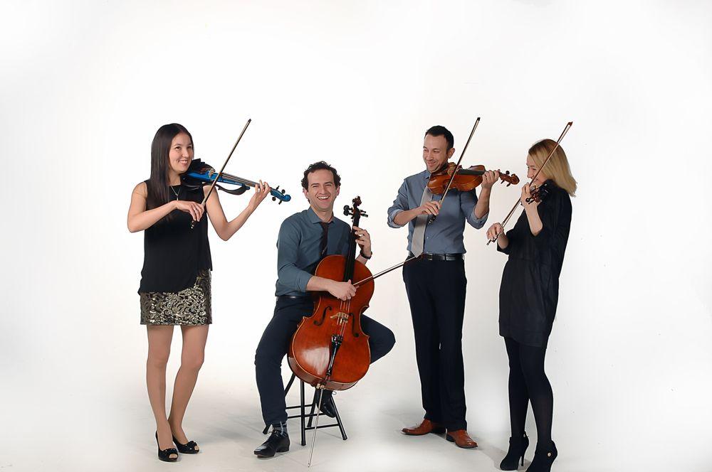 Elegance String Quartet: 2515 S Colorado St, Philadelphia, PA