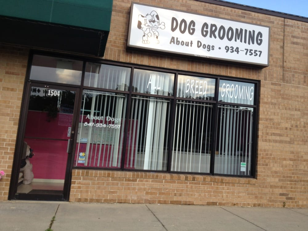 Palatine (IL) United States  city photos gallery : Dogs Pet Groomers 46 E Palatine Rd Palatine, IL, United States ...