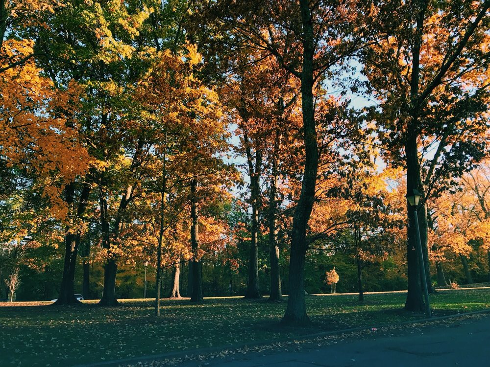 Burnet Woods: 3251 Brookline Dr, Cincinnati, OH
