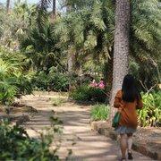 Mercer Arboretum And Botanic Gardens 221 Photos 46 Reviews Parks 22306 Aldine Westfield