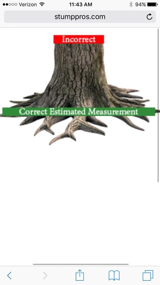 Stump pros demander un devis arboriculture et lagage for Devis elagage