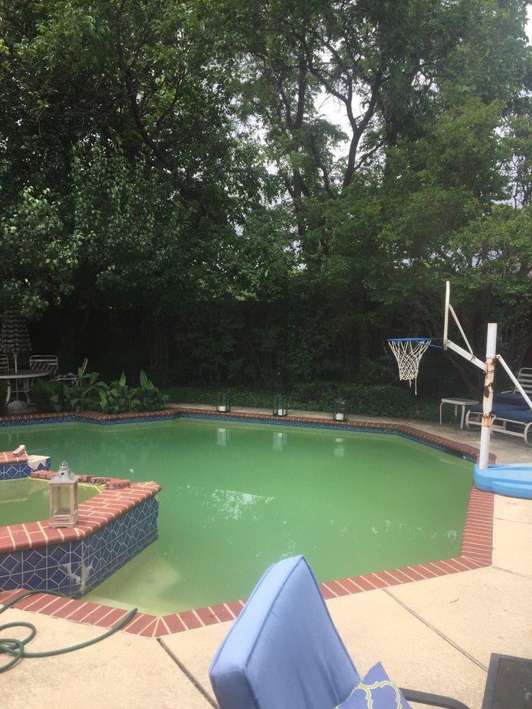 Photos For Texan Blue Pool Service Yelp