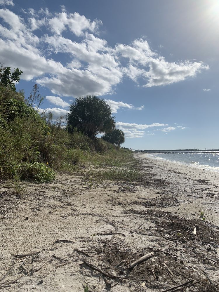 Bahia Beach Nature Preserve: 2513 W Shell Point Rd, Ruskin, FL