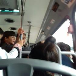 Ruta Autobuses Estrellas Del Sur Puebla N Mero De
