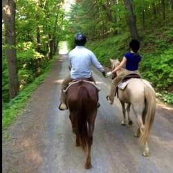Greenridge Horse Ranch - 14 Photos - Horseback Riding - 130 Horse