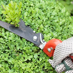 green fields landscape company landscaping 6335 camp bullis rd