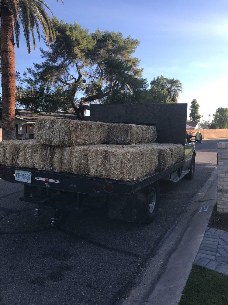 Mesa Feed Barn: 240 E Broadway Rd, Mesa, AZ
