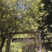 Muir Woods National Monument 3184 Photos Amp 1225 Reviews