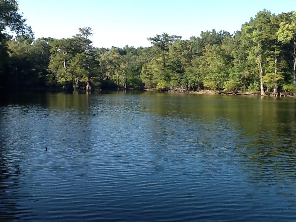 White River National Wildlife Refuge: 163 N Cc Camp Rd, Saint Charles, AR