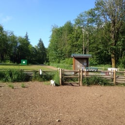 Willis Tucker Dog Park Snohomish