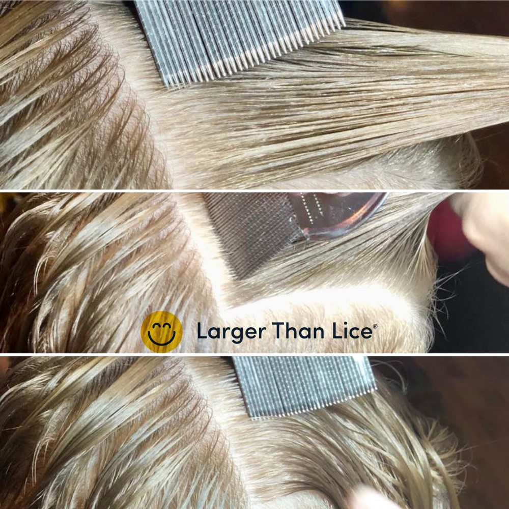 Larger Than Lice