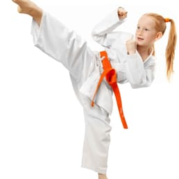 Martial arts bicester