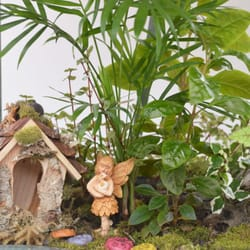 Photo Of Garden Supply Company Cary Nc United States Fairy Gardens