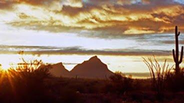 Tucson Visitors Center