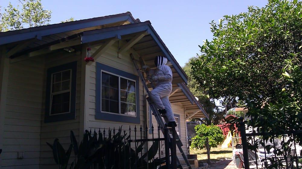 Don's Drop Dead Pest Control: Altadena, CA