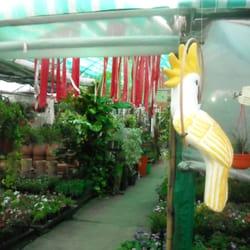 Vivero gold garden avenida e per n 7822 rosario for Viveros en rosario