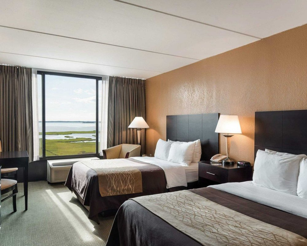 comfort inn gold coast 44 photos 38 reviews hotels 11201