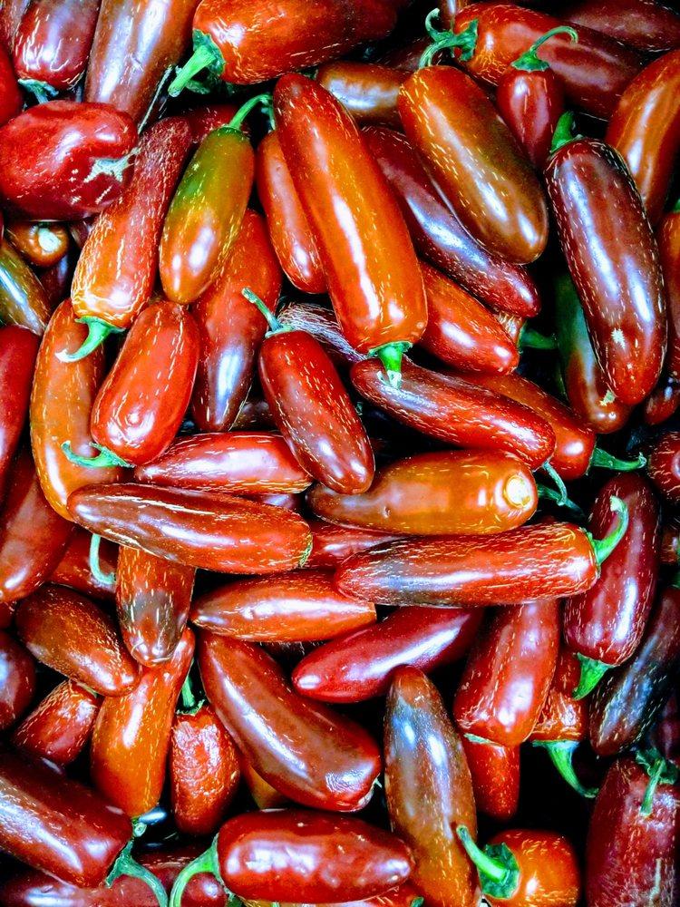 Food from El Primo Taqueria